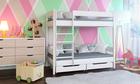 Łóżko piętrowe dla dzieci Dino 2